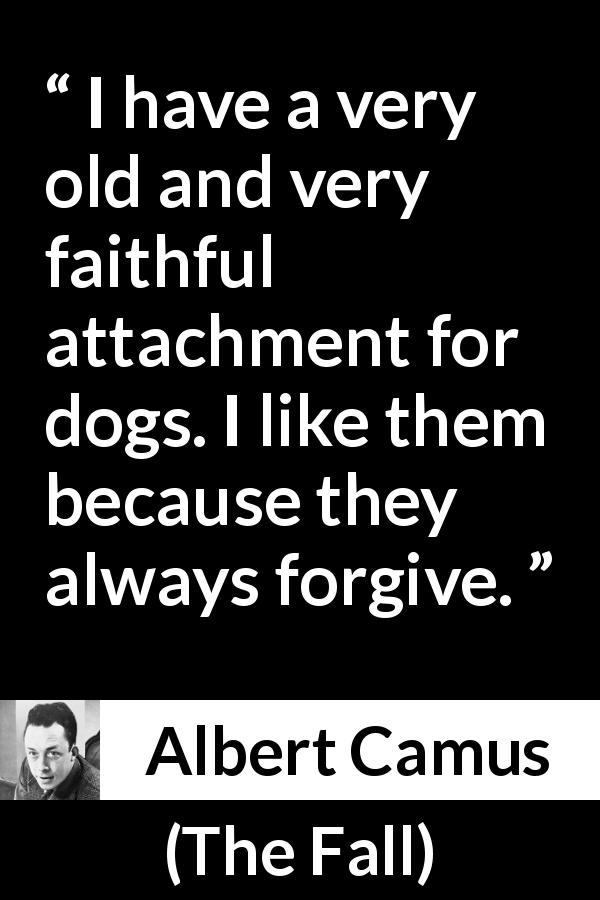 "Albert Camus about forgiveness (""The Fall"", 1956) - I have a very old and very faithful attachment for dogs. I like them because they always forgive."