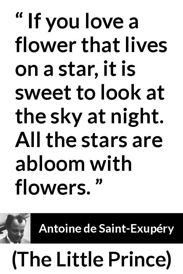 If You Love A Flower That Lives On A Star It Is Sweet To Look At