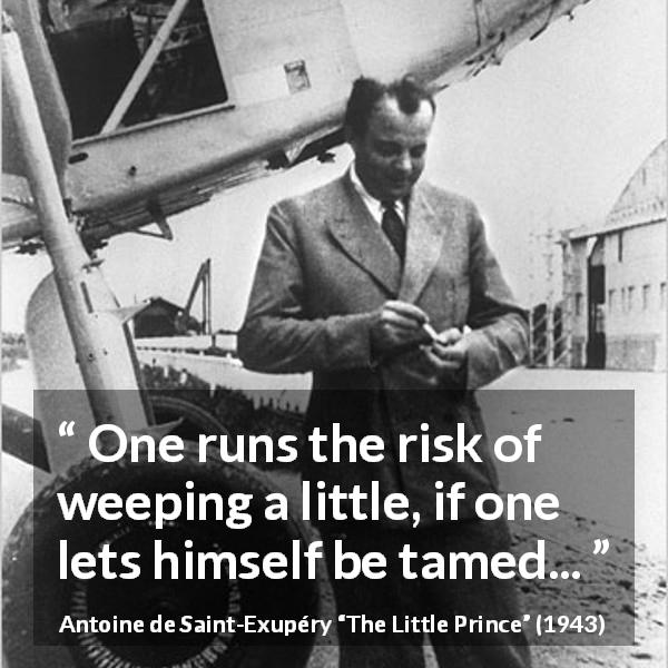 Antoine de Saint-Exupéry quote about weeping from The Little Prince - One runs the risk of weeping a little, if one lets himself be tamed...