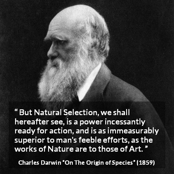 "Charles Darwin about man (""On The Origin of Species"", 1859) - But Natural Selection, we shall hereafter see, is a power incessantly ready for action, and is as immeasurably superior to man's feeble efforts, as the works of Nature are to those of Art."