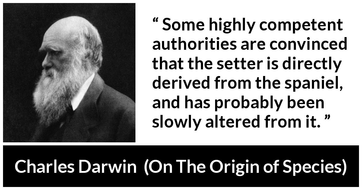 "Charles Darwin about time (""On The Origin of Species"", 1859) - Some highly competent authorities are convinced that the setter is directly derived from the spaniel, and has probably been slowly altered from it."