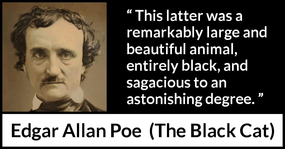 "Edgar Allan Poe about animal (""The Black Cat"", 1843) - This latter was a remarkably large and beautiful animal, entirely black, and sagacious to an astonishing degree."