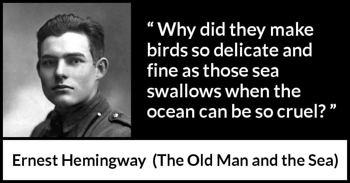 "Ernest Hemingway about sea (""The Old Man and the Sea"", 1952) - Why did they make birds so delicate and fine as those sea swallows when the ocean can be so cruel?"