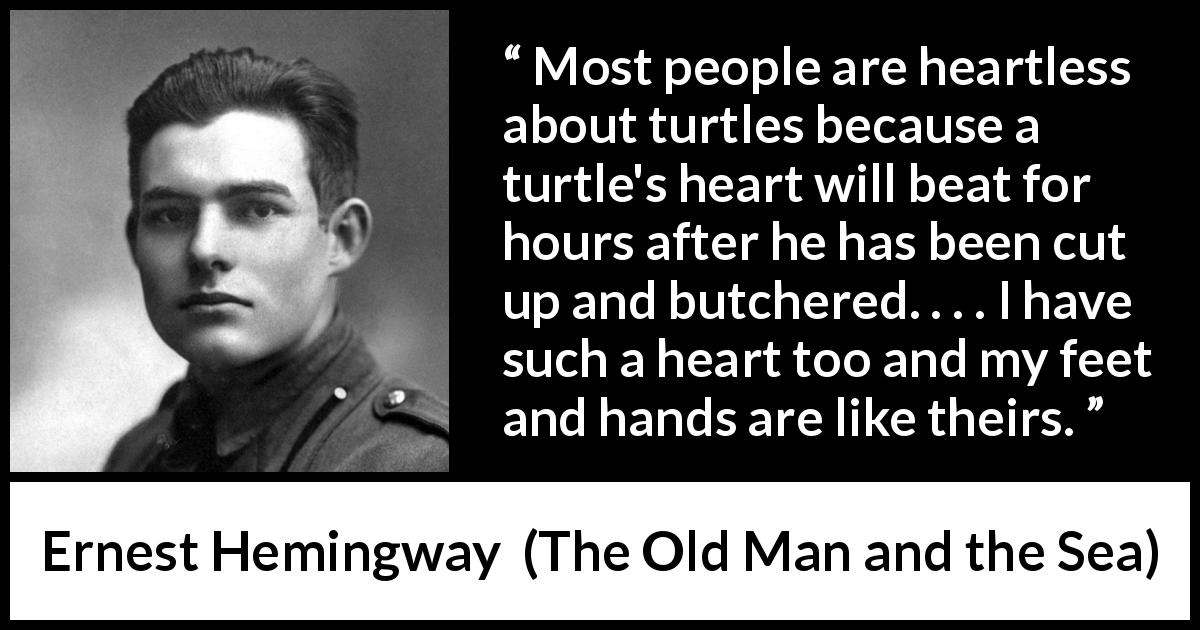 "Ernest Hemingway about turtle (""The Old Man and the Sea"", 1952) - Most people are heartless about turtles because a turtle's heart will beat for hours after he has been cut up and butchered. . . . I have such a heart too and my feet and hands are like theirs."