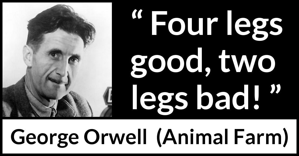 animals quotes