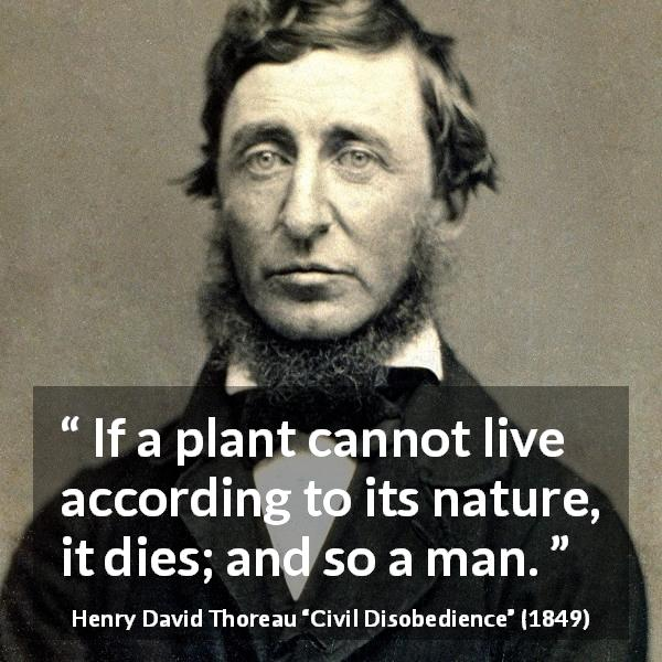 "Henry David Thoreau about freedom (""Civil Disobedience"", 1849) - If a plant cannot live according to its nature, it dies; and so a man."