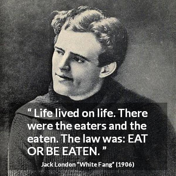 Jack London quote about life from White Fang (1906) - Life lived on life. There were the eaters and the eaten. The law was: EAT OR BE EATEN.