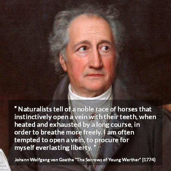 Johann Wolfgang von Goethe quote about death from The Sorrows of Young Werther (1774) - Naturalists tell of a noble race of horses that instinctively open a vein with their teeth, when heated and exhausted by a long course, in order to breathe more freely. I am often tempted to open a vein, to procure for myself everlasting liberty.