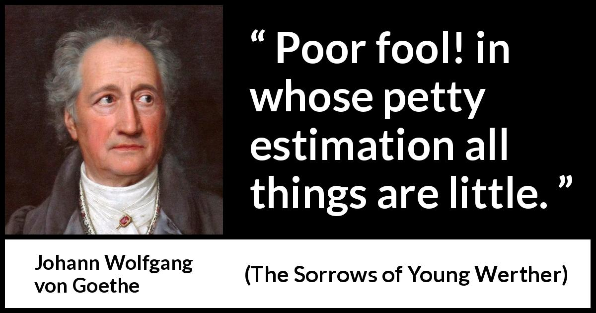 Johann Wolfgang von Goethe - The Sorrows of Young Werther - Poor fool! in whose petty estimation all things are little.