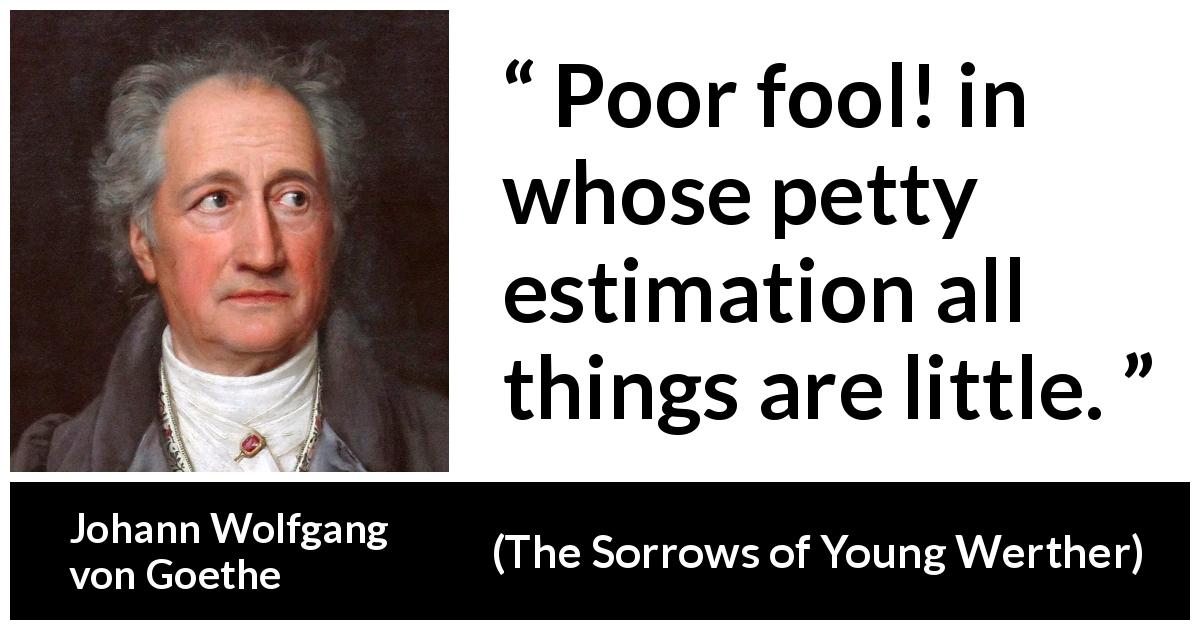 "Johann Wolfgang von Goethe about foolishness (""The Sorrows of Young Werther"", 1774) - Poor fool! in whose petty estimation all things are little."