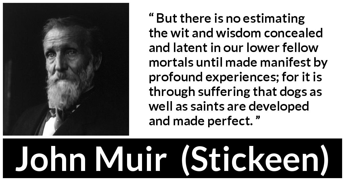"John Muir about wisdom (""Stickeen"", 1897) - But there is no estimating the wit and wisdom concealed and latent in our lower fellow mortals until made manifest by profound experiences; for it is through suffering that dogs as well as saints are developed and made perfect."