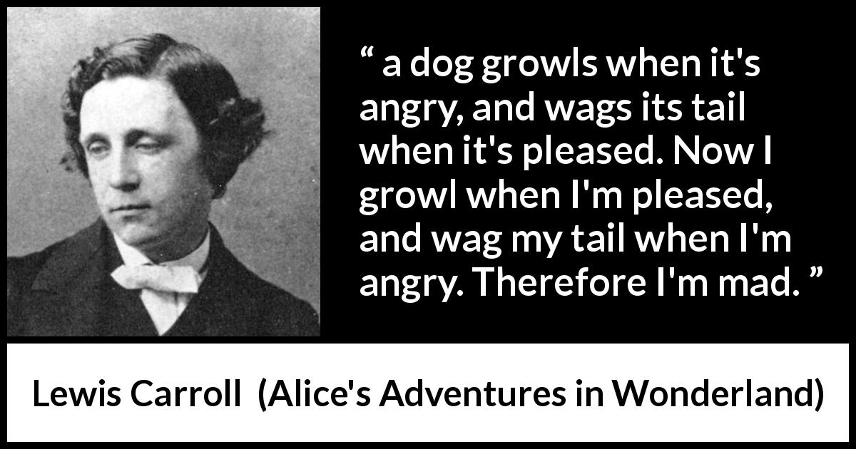 "Lewis Carroll about madness (""Alice's Adventures in Wonderland"", 1865) - a dog growls when it's angry, and wags its tail when it's pleased. Now I growl when I'm pleased, and wag my tail when I'm angry. Therefore I'm mad."