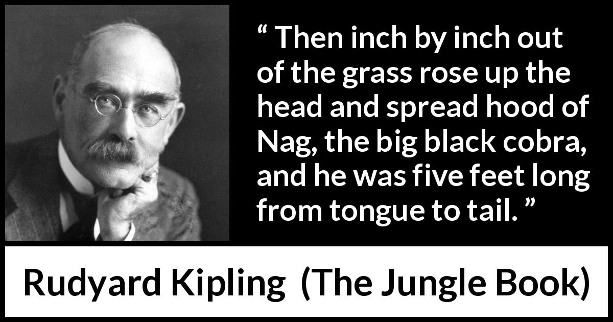 "Rudyard Kipling about fear (""The Jungle Book"", 1894) - Then inch by inch out of the grass rose up the head and spread hood of Nag, the big black cobra, and he was five feet long from tongue to tail."