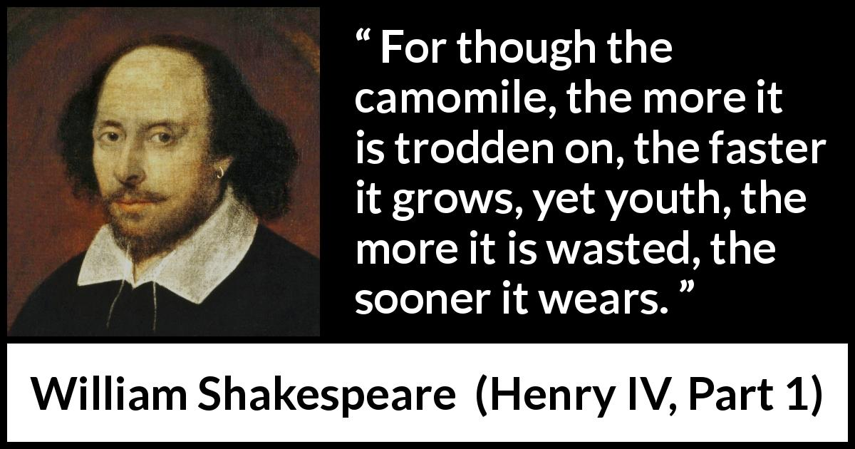 "William Shakespeare about flower (""Henry IV, Part 1"", 1597) - For though the camomile, the more it is trodden on, the faster it grows, yet youth, the more it is wasted, the sooner it wears."