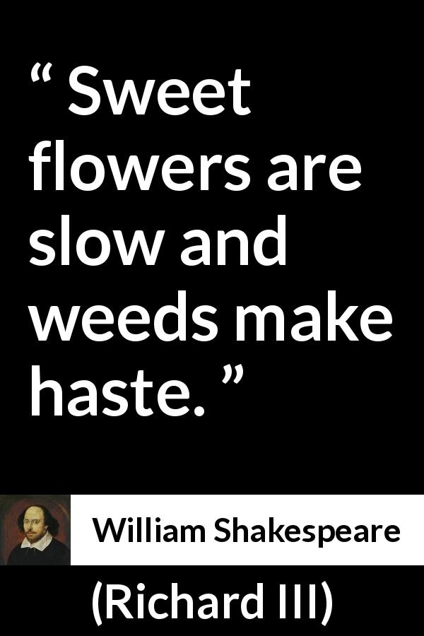 "William Shakespeare about flower (""Richard III"", 1597) - Sweet flowers are slow and weeds make haste."