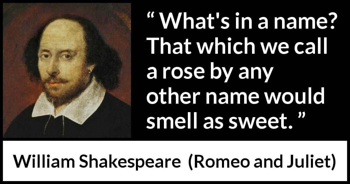 language quotes